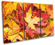 Autumn Leaves Floral - 13-1140(00B)-TR32-LO